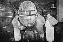 Roger-Viollet | 245474 | Cavistes des vins de Champagne  Moët et Chandon , Epernay (Marne), 1941. | © LAPI / Roger-Viollet