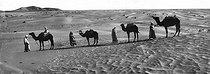Roger-Viollet | 252473 | Sahara desert. Around 1900. | © Léon & Lévy / Roger-Viollet