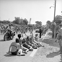 Roger-Viollet | 264229 | Passage of the pack during the Tour de France 1964. | © Roger-Viollet / Roger-Viollet