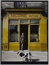 Roger-Viollet | 264887 |  Nicoine  bootmaker, 103 rue de Rome. Paris (XVIIth arrondissement), 1982. Photograph by Felipe Ferré (born in 1934). Paris, musée Carnavalet. | © Felipe Ferré / Musée Carnavalet / Roger-Viollet