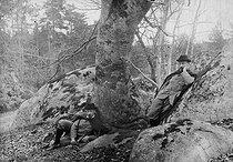 Roger-Viollet | 271776 | Special effects by Henri Roger.  Bilocation . Fontainebleau forest, 1897. | © Henri Roger / Roger-Viollet