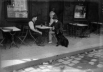 Roger-Viollet | 275161 | Hommes buvant à la terrasse d'un café. France, vers 1914. | © Albert Harlingue / Roger-Viollet