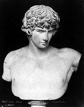 Roger-Viollet | 296245 | Antinous, buste (Antique Romain), Louvre. | © Léopold Mercier / Roger-Viollet