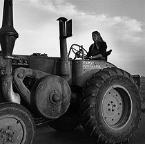 Roger-Viollet | 308956 | The forerunner of tractor driven by a young woman. 1958. Photograph by Janine Niepce (1921-2007). | © Janine Niepce / Roger-Viollet