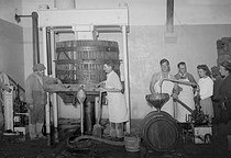 Roger-Viollet | 311620 | Press. Manufacture of the Champagne wine (Möet and Chandon). France, 1941. | © LAPI / Roger-Viollet