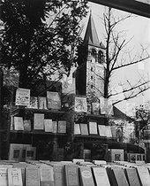 Roger-Viollet | 325949 | Bookstore at Saint-Germain-des-Prés, the literary district. Very rich intellectual production: Camus, Aron, Mauriac ... Paris (VIth arrondissement), 1956. Photograph by Janine Niepce (1921-2007). | © Janine Niepce / Roger-Viollet