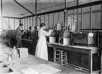 Roger-Viollet | 335605 | Institut Pasteur. Fabrication du vaccin antityphoïdique. Paris (XVème arr.), 1919. | © Roger-Viollet / Roger-Viollet