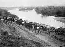 Roger-Viollet | 339096 | World War I. Convoy in Serbia. 1914. | © Albert Harlingue / Roger-Viollet