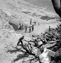 Roger-Viollet | 350108 | Supplying woods for the army (26th Goum). Near Imi n' Tanout (Morocco), July 1945. | © Gaston Paris / Roger-Viollet