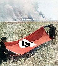 Roger-Viollet | 355272 | Guerre 1939-1945. Opération Barbarossa (invasion de l'URSS par la Wehrmacht). Soldats allemands tendant un drapeau nazi afin de se protéger des tirs de leur propre armée, 1942. | © Bilderwelt / Roger-Viollet