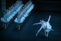 Roger-Viollet | 356552 | Swan Lake - Acts I and II | © Colette Masson / Roger-Viollet
