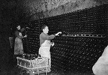Roger-Viollet | 364951 | Cave de vin de Champagne  Moët et Chandon , manipulation des bouteilles, Epernay (Marne). | © LAPI / Roger-Viollet