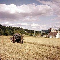 Roger-Viollet | 378524 | Harvests. Wheat cutting. France, 1976. | © Roger-Viollet / Roger-Viollet