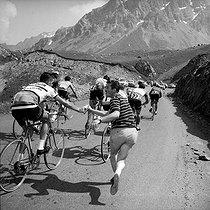 Roger-Viollet   381739   Tour de France 1964. Stage in the mountains.   © Roger-Viollet / Roger-Viollet