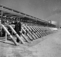 Roger-Viollet | 394448 | AL KUWAIT - TRANSFORMATION OF UAE | © Roger-Viollet / Roger-Viollet