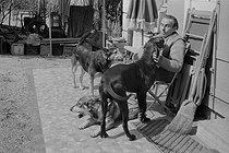 Roger-Viollet | 449373 | Louis-Ferdinand Céline (1894-1961), French writer. Meudon, 1955. | © Bernard Lipnitzki / Roger-Viollet