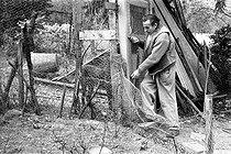 Roger-Viollet | 463408 | Louis-Ferdinand Céline (1894-1961), French writer. Meudon (Hauts-de-Seine), 1955-1956. | © Bernard Lipnitzki / Roger-Viollet