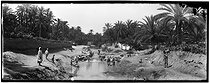 Roger-Viollet | 468755 | Women washing their clothes in the Wadi | © Léon & Lévy / Roger-Viollet