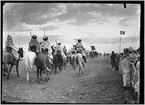 Roger-Viollet | 472447 | Fantasia, traditional horse-riding show. Algeria, circa 1900. | © Léon & Lévy / Roger-Viollet