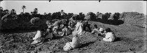 Roger-Viollet | 486550 | Sahara. Around 1900. | © Léon & Lévy / Roger-Viollet