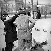 Roger-Viollet | 501793 | CHILDREN AND PIGEONS | © Pierre Jahan / Roger-Viollet