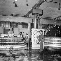 Roger-Viollet | 506007 | Caves de vin de Champagne  Moët et Chandon , pressoir, Epernay (Marne), 1953. | © LAPI / Roger-Viollet