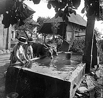 Roger-Viollet | 526584 | Watering place in Le Chêne. France, 1919. Photo: Ernest Roger. | © Ernest Roger / Roger-Viollet