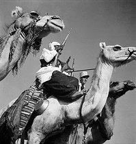 Roger-Viollet | 534652 | Gaston, Paris (1903-1964). Le Sahara. Les filles, portraits. Ouargla, Algérie. négatif sur support souple en nitrate de cellulose. [s. d.]. Bibliothèque historique de la Ville de Paris. | © Gaston Paris / BHVP / Roger-Viollet