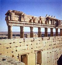 Roger-Viollet | 547330 | Sanctuary of Bel. Palmyra (Syria), November 1953. | © Collection Roger-Viollet / Roger-Viollet