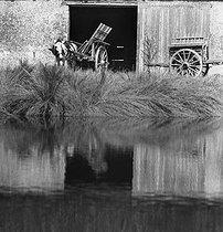 Roger-Viollet   570841   Farm in Ile-de-France.   © Pierre Jahan / Roger-Viollet