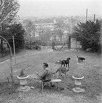 Roger-Viollet | 576126 | Louis Ferdinand Céline (1894-1961), French writer, with his pets. Meudon (France), circa 1955. | © Bernard Lipnitzki / Roger-Viollet