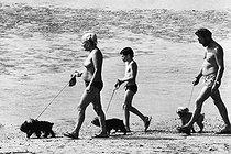Roger-Viollet | 592658 | Holidays in Deauville (Calvados, France). 1983. | © Jean-Pierre Couderc / Roger-Viollet