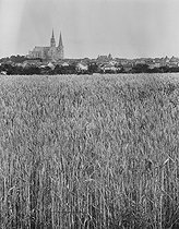 Roger-Viollet   609911   View of the cathedral from the wheatfields. Chartres (France). Photograph by René Giton (known as René-Jacques, 1908-2003). Bibliothèque historique de la Ville de Paris.   © René-Jacques / BHVP / Roger-Viollet