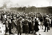 Roger-Viollet | 611800 | World War II. Arrival of Hungarian Jews in Auschwitz-Birkenau. Between May 2 and July 9 more than 430 000 Hungarian Jews were deported to Auschwitz. Poland, June 1944. Galerie Bilderwelt, Berlin. BIL-AU 81 | © Bilderwelt / Roger-Viollet