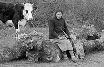 Roger-Viollet | 612335 | Farmer. Brittany, 1960's. Photograph by Janine Niepce (1921-2007). | © Janine Niepce / Roger-Viollet