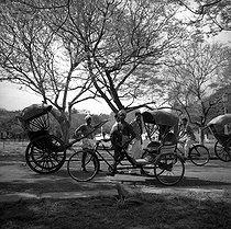 Roger-Viollet | 616566 | Rickshaws. Pondicherry (India), 1961. Photograph by Hélène Roger-Viollet (1901-1985). | © Hélène Roger-Viollet / Roger-Viollet