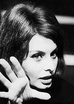 Roger-Viollet | 635341 | Sophia Loren (born in 1934), Italian actress, 1962. | © Jack Nisberg / Roger-Viollet