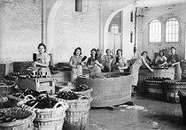 Roger-Viollet | 646834 | Fabrique de vin de Champagne  Moët et Chandon , lavage des bouteilles, Epernay (Marne), 1941. | © LAPI / Roger-Viollet