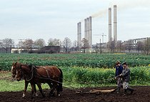 Roger-Viollet | 647569 | Farmers ploughing with a horse in front of a factory in the Lubbenau area, a few days before the the fall of the Berlin wall. East Germany, November 1989. | © Jean-Paul Guilloteau / Roger-Viollet