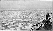 Roger-Viollet | 652381 | Expedition in Antarctica of Sir Ernest Henry Shackleton (1874-1922), British explorer. Ice floes. | © Roger-Viollet / Roger-Viollet