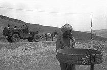 Roger-Viollet | 668753 | Wheat Harvest. M'Zaourat, Mascara Area, during the Algerian War of Independence, Summer 1961. | © Jean-Pierre Laffont / Roger-Viollet