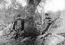 Roger-Viollet | 673004 | Special effects by Henri Roger.  Bilocation . Fontainebleau forest, 1897. | © Henri Roger / Roger-Viollet