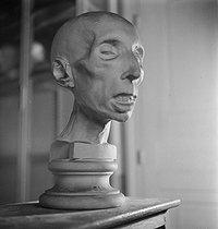 Roger-Viollet | 675254 | Head cast. Musée Dupuytren, rue de l'Ecole-de-Médecine. Paris (VIth arrondissement), circa 1930. | © Gaston Paris / Roger-Viollet