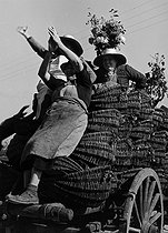 Roger-Viollet | 679537 | Three women up on a cart decorated with flowers, loaded with grapes. Photograph by Janine Niepce (1921-2007). | © Janine Niepce / Roger-Viollet