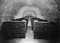 Roger-Viollet | 697705 | Vins de Champagne. Galerie de bouteille de vin sur pointe, 1936. | © Jacques Boyer / Roger-Viollet