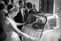 Roger-Viollet | 701442 | Girl in front of a jukebox, in 1956. | © Bernard Lipnitzki / Roger-Viollet