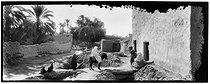 Roger-Viollet | 701917 | Village in the Algerian Sahara | © Léon & Lévy / Roger-Viollet