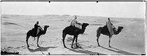 Roger-Viollet | 702589 | Traversée de la mer de sable. Sahara (Algérie), vers 1900. | © Léon & Lévy / Roger-Viollet