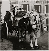 Roger-Viollet | 702669 | Ice-cream maker at the Opéra National de Paris, Palais Garnier, horse, Paris (IXth arrondissement). 1934. Photograph by Roger Schall (1904-1995). Paris, musée Carnavalet. | © Roger Schall / Musée Carnavalet / Roger-Viollet