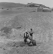 Roger-Viollet | 732086 | Algerian War of Independence. The French Army's fort in M'Zaourat, Mascara Area. Planting of a tree by the local people. Algeria, Summer 1961. | © Jean-Pierre Laffont / Roger-Viollet